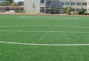 学校体育场:人造草坪